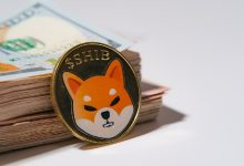 Photo of You can be a Shiba Inu (SHIB) millionaire for $7 dollars