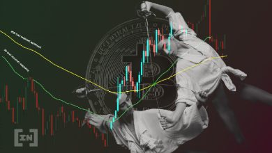 Photo of Bitcoin (BTC) On-Chain Analysis: Whales Continue Accumulating